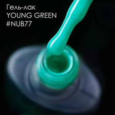 nub77insta